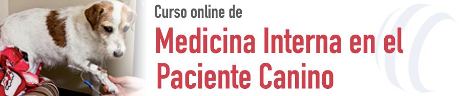 Medicina Interna en el Paciente Canino