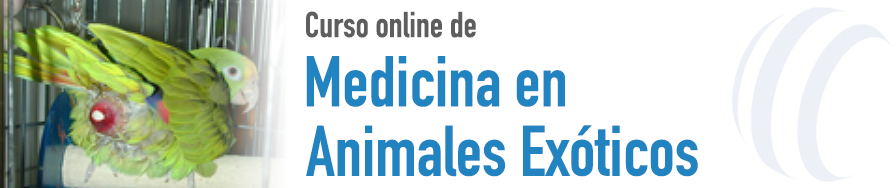 Medicina de Animales Exóticos