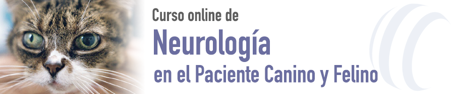 Neurología en el Paciente Canino y Felino