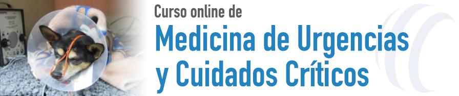 Medicina de Urgencias y Cuidados Críticos